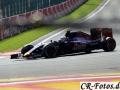 Formel1-SPA-(875)