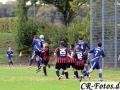 Hemmingen-Hoefingen04-10-15-(100)