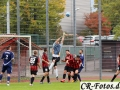 Hemmingen-Hoefingen04-10-15-(60)