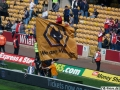Wolves-Rotherham (19)