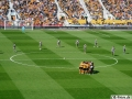 Wolves-Rotherham (35)