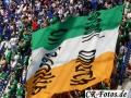 Frankreich-Irland-043_1