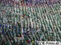 Frankreich-Irland-151_1