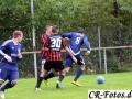 Hemmingen-Hoefingen04-10-15-(29)