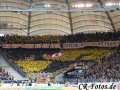 VfBStuttgart-DynamoDresden-025_1